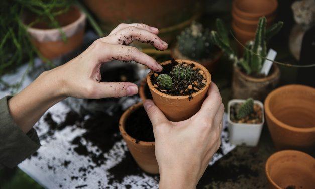 Хобби – как найти занятие для души
